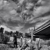 Quince creadores aragoneses convierten en arte los desechos del Ebro