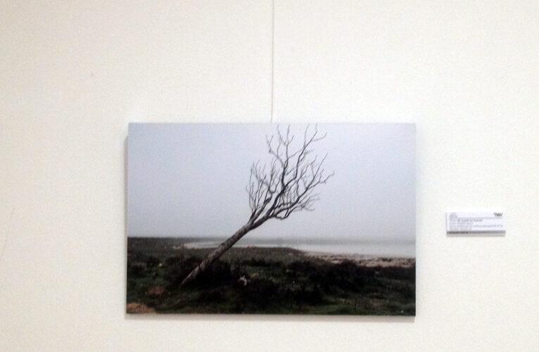 """""""Me quede sin fuerzas"""" - fotografía Digital - Miguel Sanza"""
