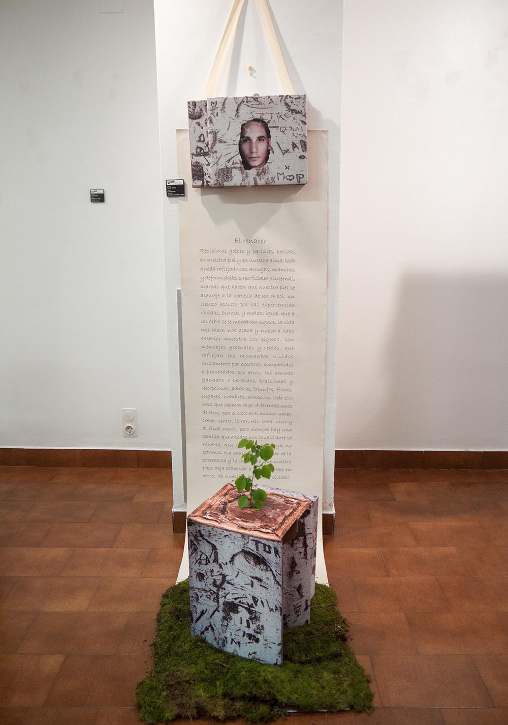 El renacer - Miguel Sanza - Instalación